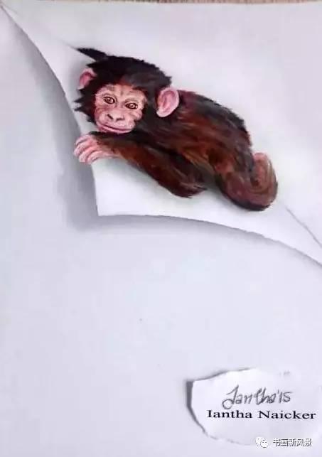 南非小女孩铅笔画的3d动物,超可爱!