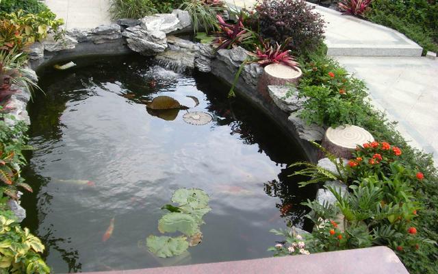 7个别墅庭院景观绿植式鱼池设计实景案例图片