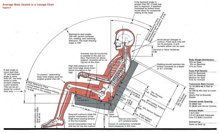 人体的肚子内部结构�_搞工业设计的,竟然还要研究人体!