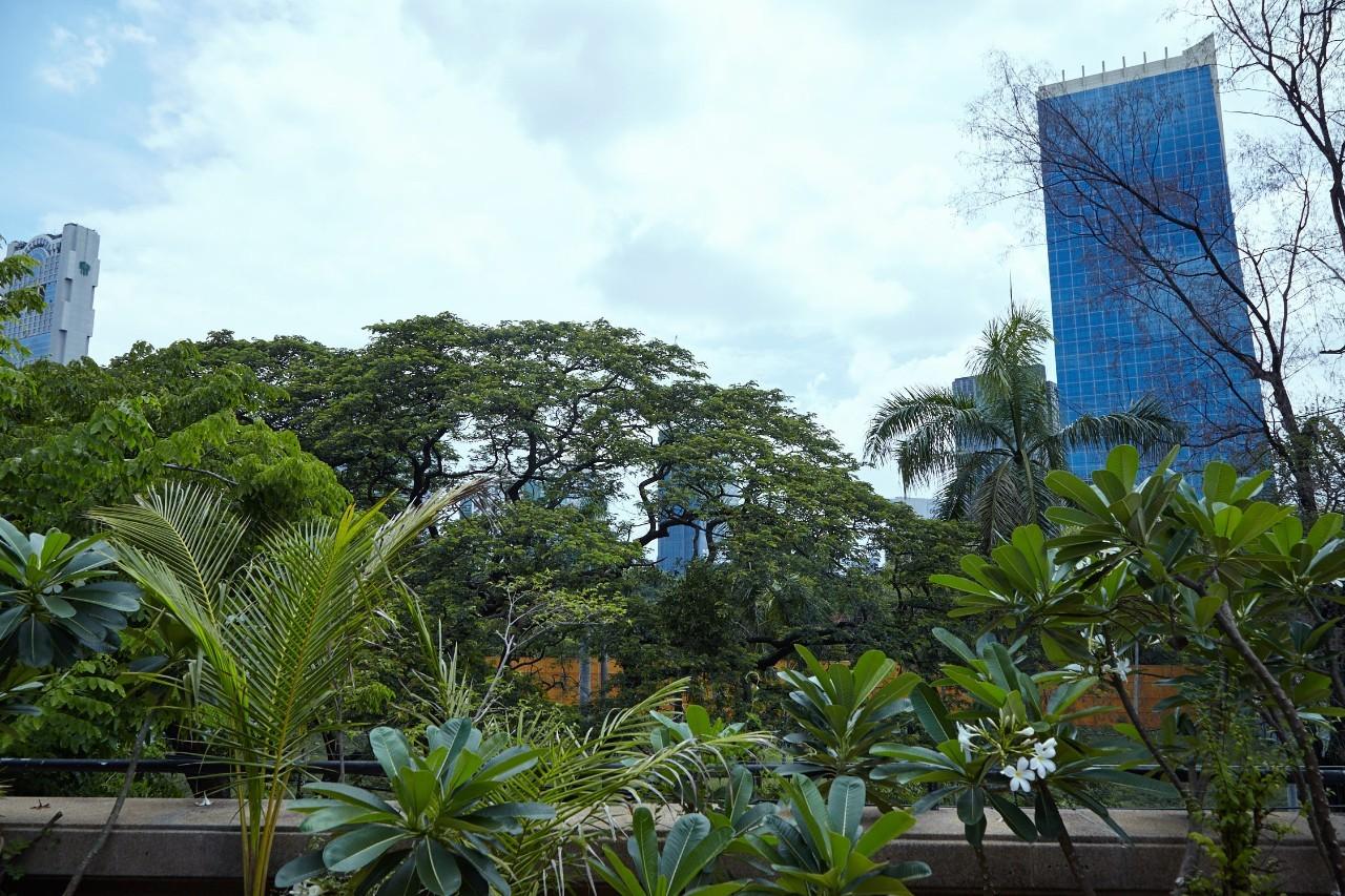 """过去一个月,还时不时会想起在曼谷的那个""""家"""""""