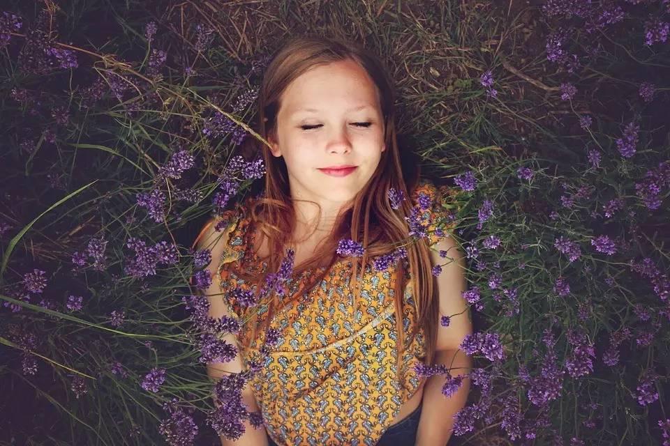 助眠 开胃 防蚊虫 薰衣草才是盛夏法宝