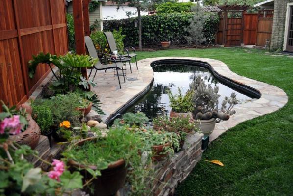 庭院小养鱼池设计图展示图片