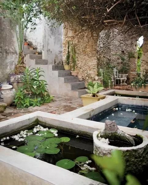 7个鱼池庭院式花木水草别墅v鱼池搭配别墅西北角房图片