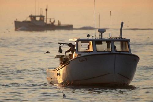 捕捞季节的原理_通达信捕捞季节主图