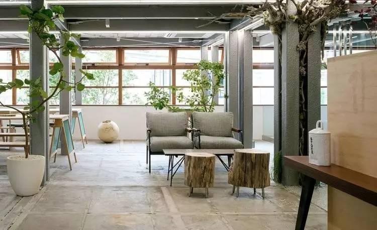 柱子的缝隙放上了有雕塑感的植物