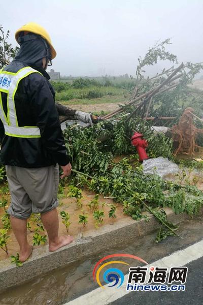 陈永国和同事来到现场发现,消防栓倾斜在绿化带中,水直直喷射出来.图片
