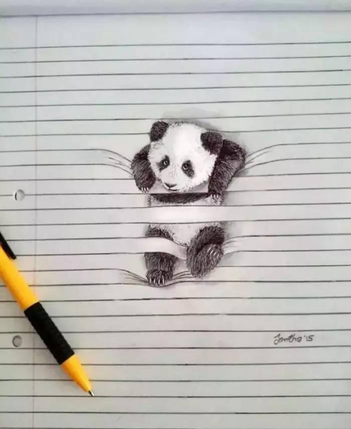 南非小女孩铅笔画的3D动物,超可爱