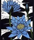 超夯:澳大利亞女藝術家Rachel Newling的油畫版畫