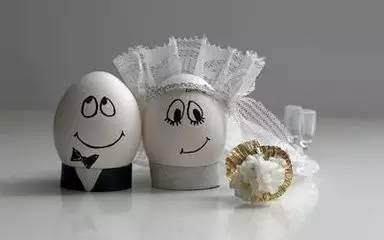 生活小创意论+�_【百变生活创意】论一个鸡蛋的自我修养