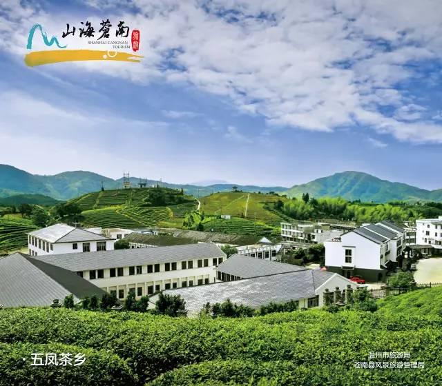 我的名字叫苍南,7月20日杭州东站