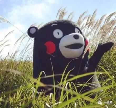开心| 熊本熊蠢萌蠢萌的样子最适合收藏了图片