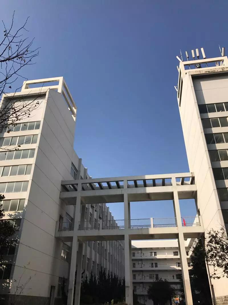 湖北省的十大高职院校排行榜