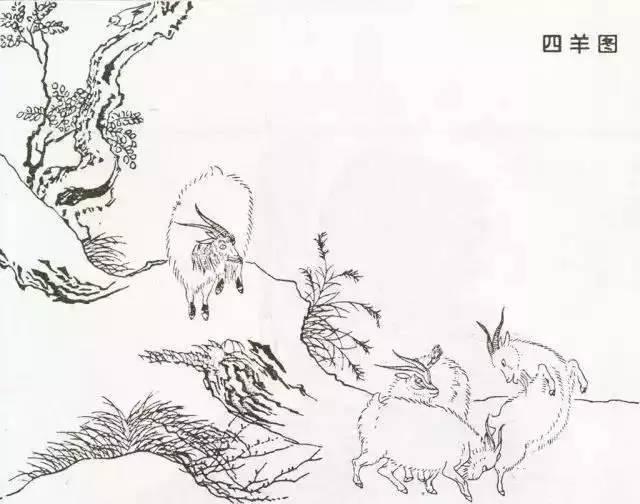 宋代花鸟白描画稿,临摹收藏