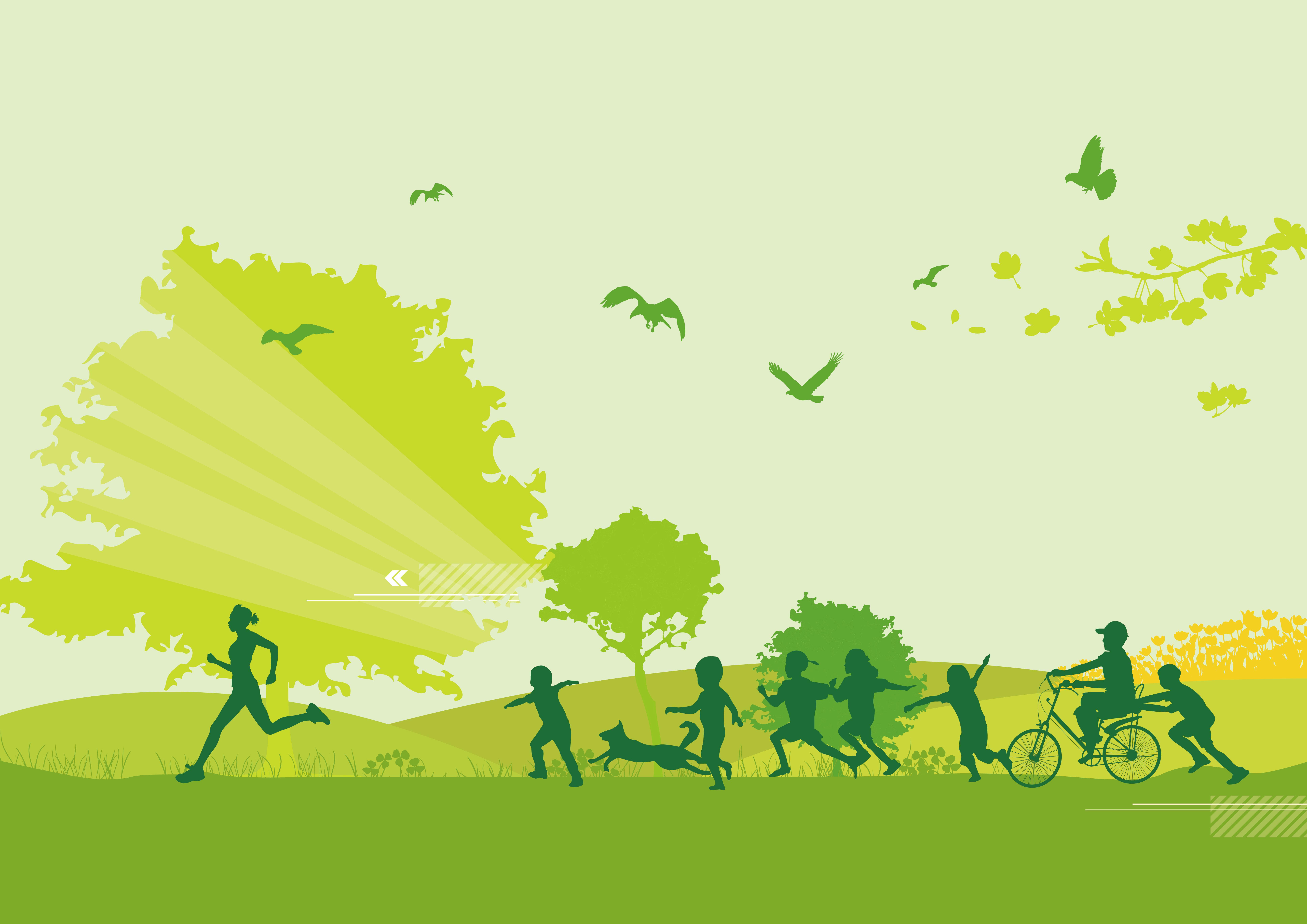 有机肥绿色农业发展制度