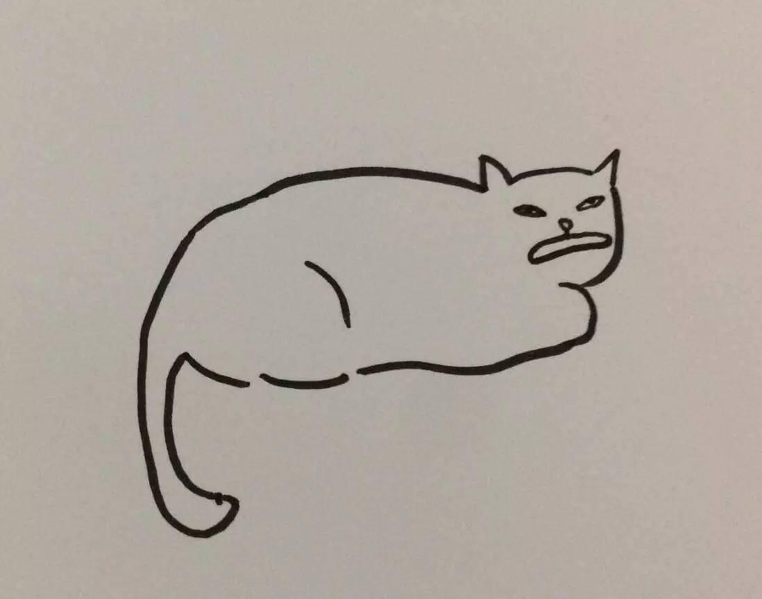 分享一组零分猫画像,哈哈哈哪来这么多令人窒息的骚操作
