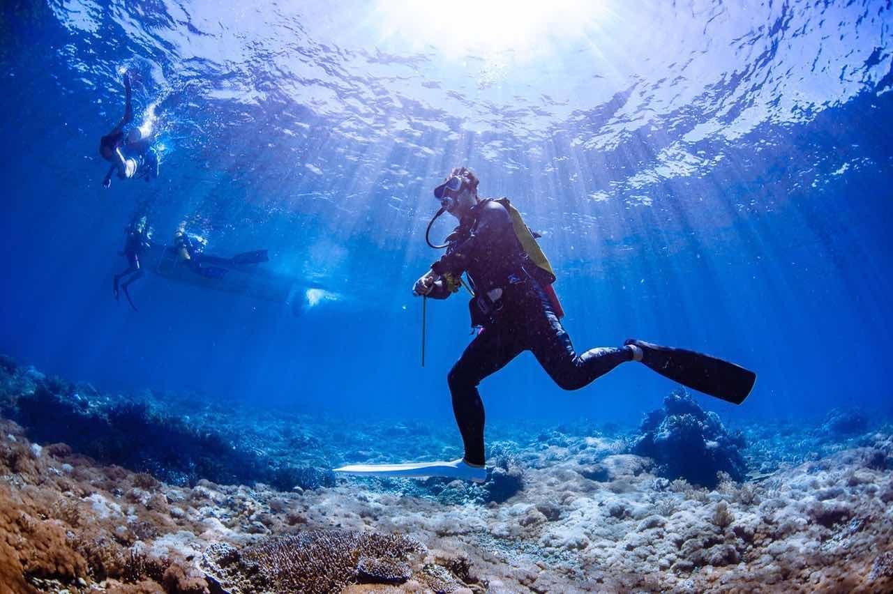 在太平洋和鲸鲨一起游泳,在达拉湾看海狼风暴,这个温州人的经历完爆好多人