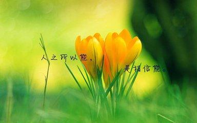 心灵励志语录荟萃三十四