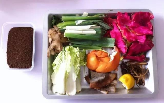 厨余�zamy�m_厨余(菜叶,水果皮等鲜材料),切得越细或粉碎成泥的效果更佳.