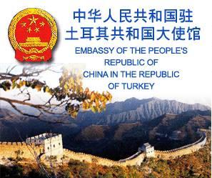 关于中国公民颁发换补发护照旅行证实施新的收费标准的通知