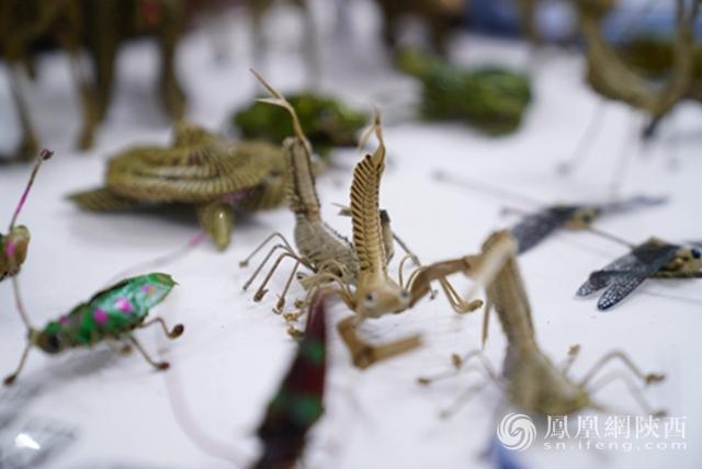很多手工编织的昆虫小视频,也是惟妙惟肖!