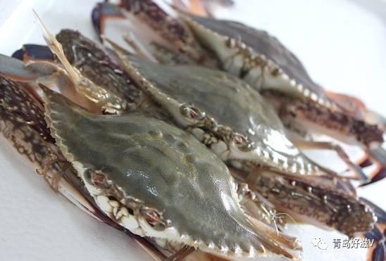 温州市场南方梭子蟹唱主角想吃会场蟹子的还要再等等