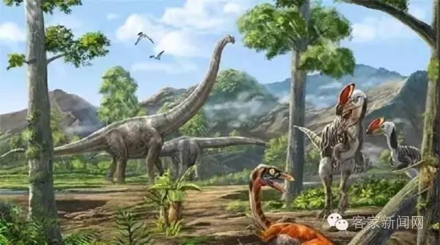 妥妥的恐龙之乡 江西将申报国家级 赣州恐龙化石保护区