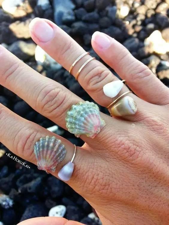 8种贝壳手工制作 提升生活逼格