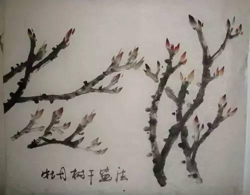 细的山水牡丹画技法以及国画渲染技法,你值得收藏