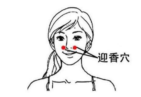 鼻塞什么原理_鼻塞是什么原理图解