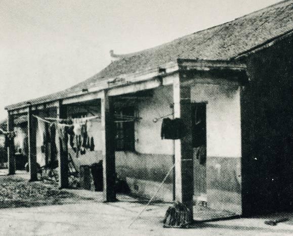 ▲60年代头桥地区农民住宅图片