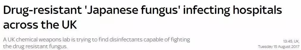 当心!危险真菌惊现英国,200人已被感染!