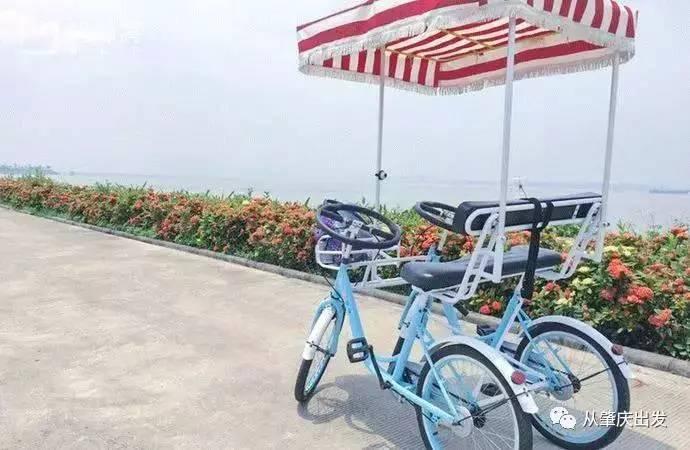 """免费!广东省内有个""""小曼谷""""!水上木屋、露营、骑行!玩转东南亚!"""