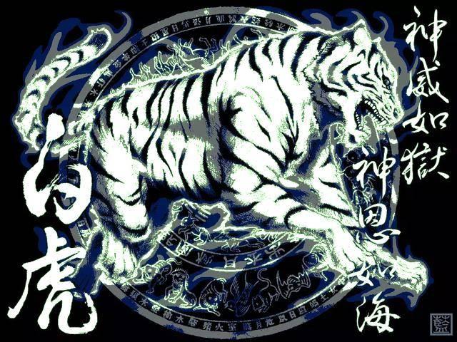 干白虎骚穴_四方神灵之白虎
