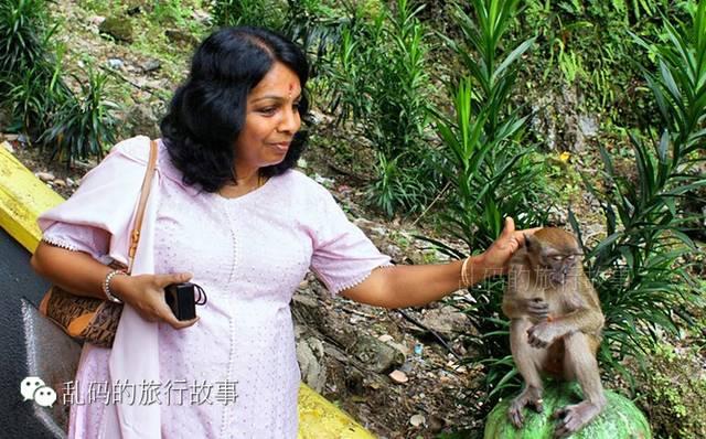 女人嫩穴洞_实拍马来西亚艳遇魔窟黑风洞 好色猴子偷袭美女!