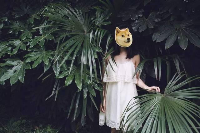 夏天如何不穿胸罩出街?8 个亲测实用的时髦小