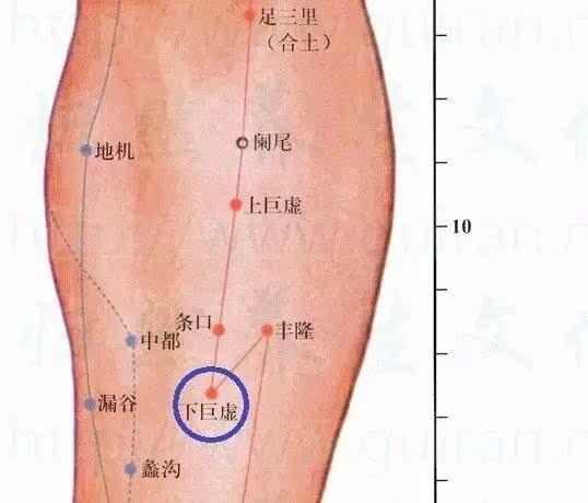 人体大胆美穴_厉兑:人体厉兑穴位于足第2趾末节外侧,距趾甲角0.1寸.