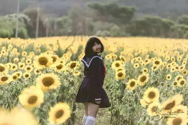 亚洲情色动物与人_他将少女心的情色发挥得淋漓尽致,看完居然有生理反应