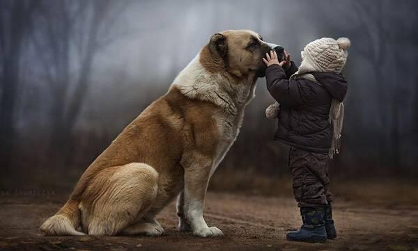 人和动物生的孩子_动物之于孩子,意味着什么? 动物伙伴能让孩子的爱向下流传.