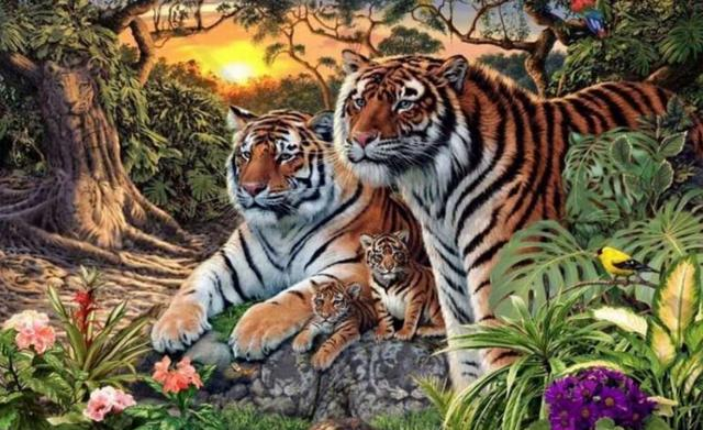 你是不是虎_如果你找出图中所有老虎,但答案的数量超乎你想象