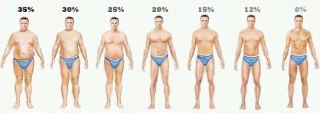 男性人体曰历囹�a_男性不同脂肪百分比水平的全身对比图