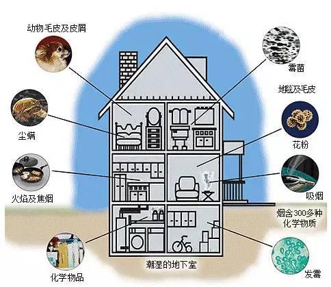 室内空气中氨的来源_车内空气常见的污染物有哪些?污染物空气理工学科汽车环境污染