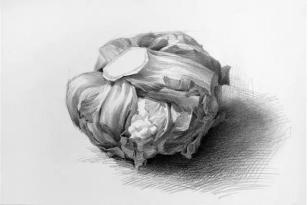 水果单个素描静物图片_素描静物单个罐子图片展示_素描静物单个罐子相关图片下载