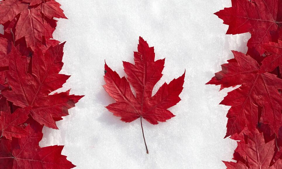 加拿大diploma文凭如何认证