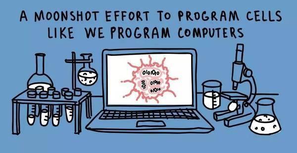 微软创造出全新DNA生物计算机 逻辑与生命实现完美交融的照片 - 1