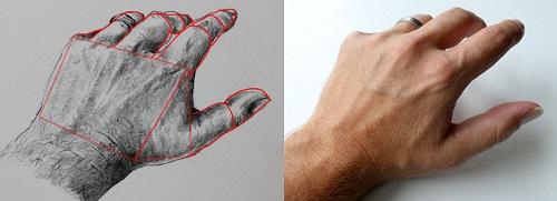 人体艺术模型_也就是指静物写生,人体模型绘画或者风景画.