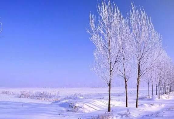 冬天的诗句_经典 | 古诗词里的冬日景象,别有天地