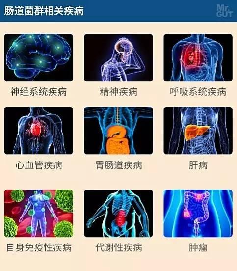 选技术群_健康 正文  内容:① 开篇解释学术名词并列示菌群分析技术,随后简要