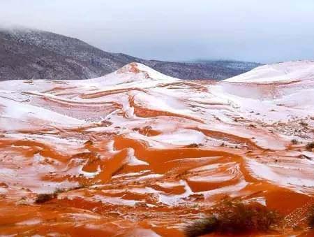 """撒哈拉沙漠下雪了"""""""