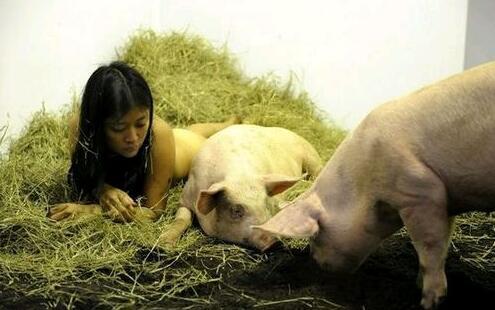 人与动物操老师_而\