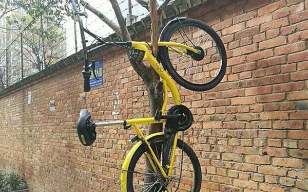 100%返现、免费骑 共享单车烧钱争一哥的照片 - 9